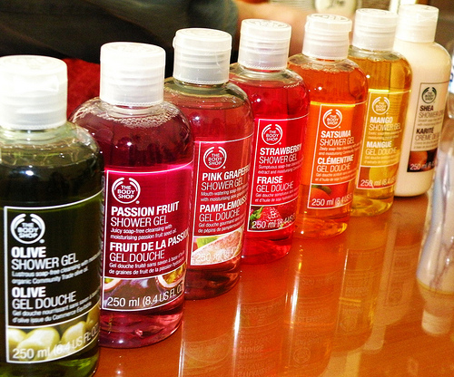 """business model of the body shop The body shop """"the business of business should not just be about  (8 hours) –  16 hours = £340 anna @ premier models catering for the."""