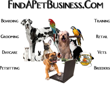 kinds of pets